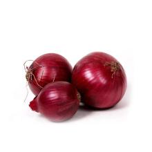Gansu onion small red onions Round Dark Red Dry Onion fresh from Farm