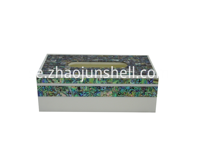abalone shell tissue box