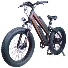 High performance powerful double lithium battery fat tire electric bicycle
