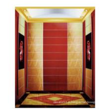 Fjzy-ascenseur (FJ8000-1) ascenseur passager Fjzy-206