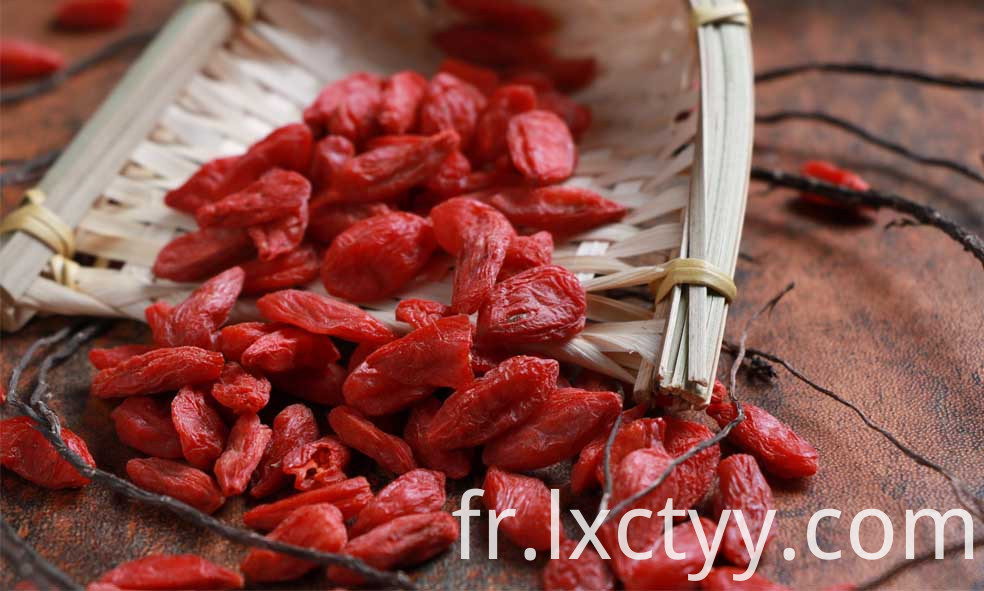dried goji berries fruit