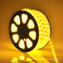 Bande lumineuse LED SMD 12V/24V Bandes lumineuses LED