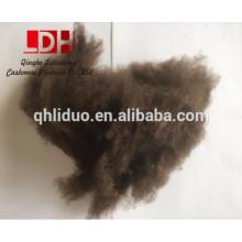 Pure100% Tibetan Yak Down Fiber com lotes toneladas em estoque