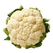 Wholesale Export Natural 2021 New Fresh Vegetable Supplier White Fresh Cauliflower