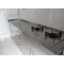 Placa de acero inoxidable para la cocina