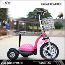 Ce approuvé E-Bike avec 3 roues 36V / 12ah 500W pour adulte