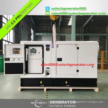 Lovol 1003G moteur électrique diesel générateur 25 kw