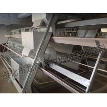 Heißer Verkauf verzinkter Broiler-Käfig-Bescheinigung von ISO9001 (H-Rahmen)