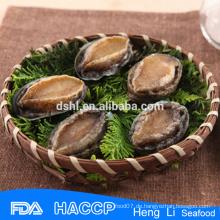 Heiße Verkauf pharmazeutische Grade Abalone Herstellung