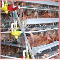 (2017 de alta qualidade, promoção superior) galinheiro para galinhas poedeiras