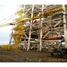 Qtz315 (7040) Grúa torre 18k Topkit para construcción