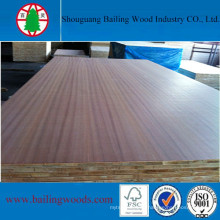 18mm Best Price Wood Vener Blockboard/Commercial Blockbaord