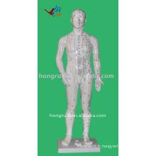 Modèle d'acupuncture humaine de 70 cm avec 361 points, modèle humain d'acupuncture