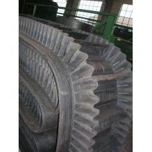 Système de bandes transporteuses à panneaux latéraux Cc Ep St 100-5400n / mm Huayue