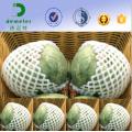 Alguns tamanhos, colorem redes de empacotamento personalizadas personalizadas do fruto da malha da rede padrão da exportação para o melão