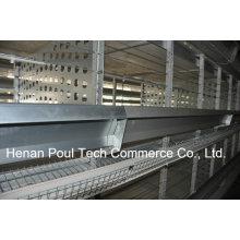 Züchter Huhn Käfig Henne und männliches Huhn (H Rahmen)