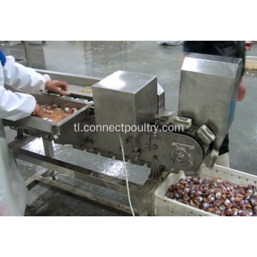 Manok Gizzard Processing Machine