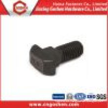 T Head Square Neck Bolt DIN186 with Grade 8.8/OEM T Bolt