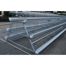 Best Selling Chicken Layer Cage