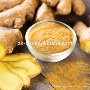Wholesale bulk Natural dehydrated Ginger powder