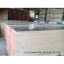 Combind Core Film Faced Plywood 610 * 2500 * 20mm