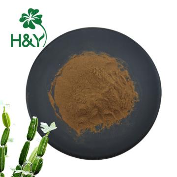 extracto de planta natural extracto de cissus quadrangularis