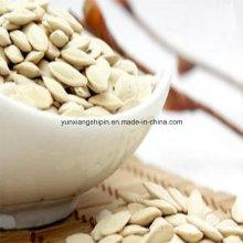 Chinese Raw Snow White Pumpkin Seeds