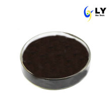 25% Anthocyanin of Bilberry Extract