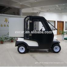 Voiturette de golf électrique 2 places avec cabine voiture buggy