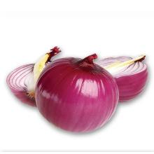 2017 neue Ernte frische große gelbe rote weiße runde Zwiebel Großhandelspreis