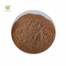 Pure Natural Organic Chinese Plant Ajuga Turkestanica Extract Decumbent Bugle Herb