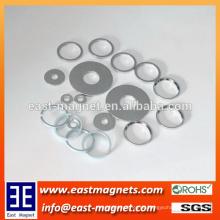 Neue Produktförderung Kundenspezifischer gesinterter Neodymmagnet / Gewohnheit viele Arten Ring-Magnet