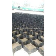 China Fabrik Kunststoff HDPE Geocell