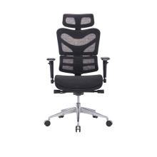 High Back Ergohuman Chair Ergonomic Design Full Mesh Office Chair