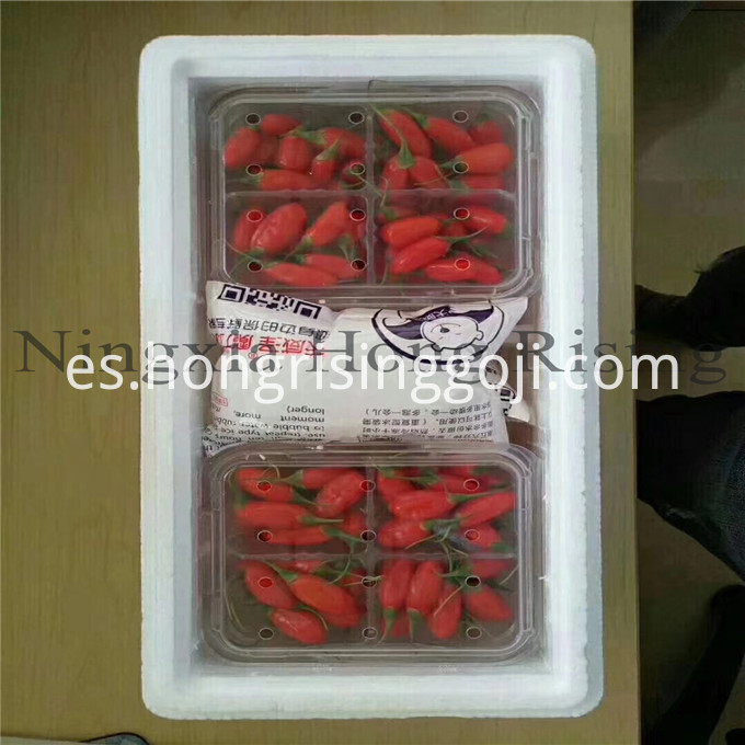 fresh goji berry packing
