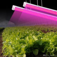 Waterproof t5 t8 integrated led grow light tube