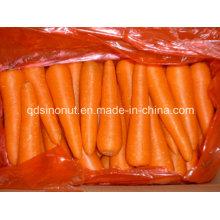 Nueva zanahoria (80-150G)