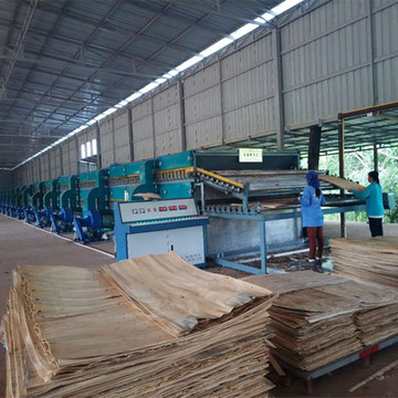 Roller Type Veneer Drying Machine