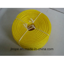 Corde PP / corde tressée (Apporé par certificat LR)