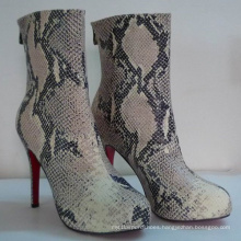 2016 New Style of Snakeskin Women Boots (Hcy02-749)