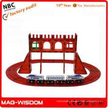 Playmags New Magnetic Building Block 3D Toys 50pcs Sets