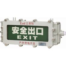Directional Sign and Signal