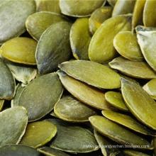 High quality shine skin pumpkin seeds for sale