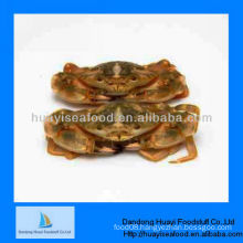 sea iqf mud crab supplier