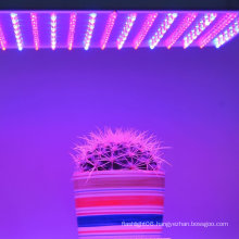 225LED AC85~265V 14W Tissue Culture Grow Panel Light