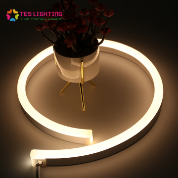 Outdoor Neon LED flexible Lichtleiste