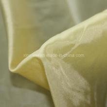 Micro 20d Twill Nylon Fabric (SL21017)