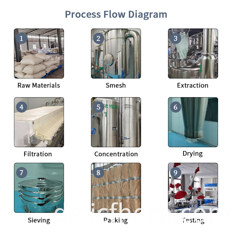Normal Extract Process Flow