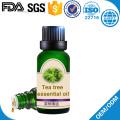 shampoo tea tree oil face and hair loss