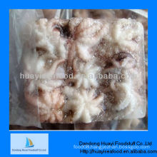 High qualtiy Seafood company frozen whole cleaned baby octopus supplier